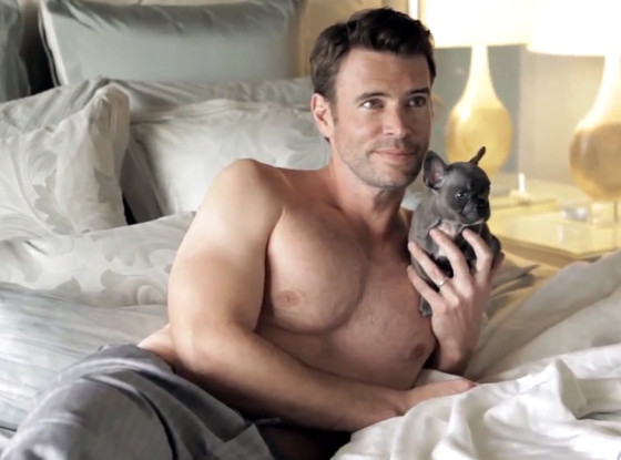 Scott-Foley-Dog